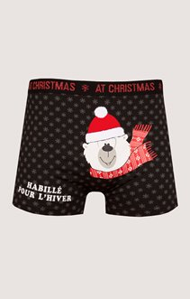 BOXER NOEL - OURS
