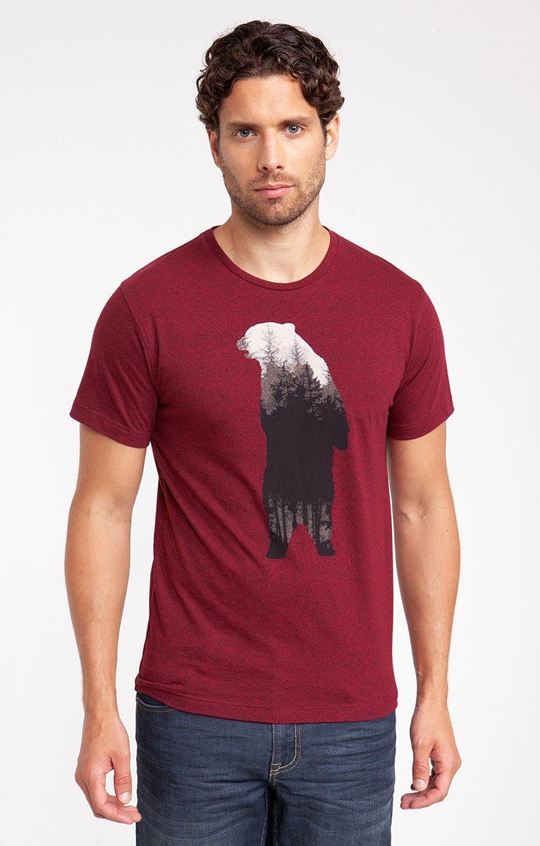 Tee shirt manches courtes bear